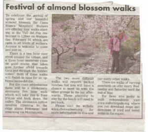 160224 Almond Blosson walk