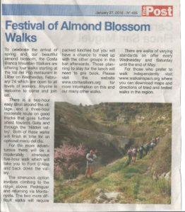 160127-almond-blossom